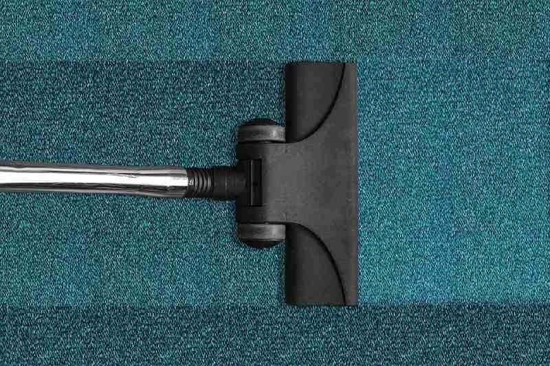vacuum cleaner head
