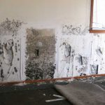 How to Clean Mould Off Walls