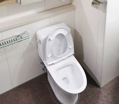 Best Toilet Bowl Cleaners in the UK (2017)