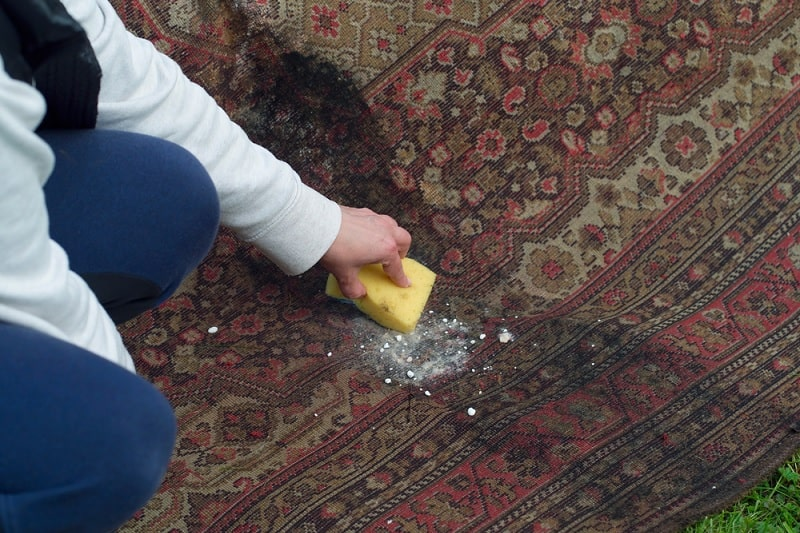 Cleaning carpet with bicarbonate of soda