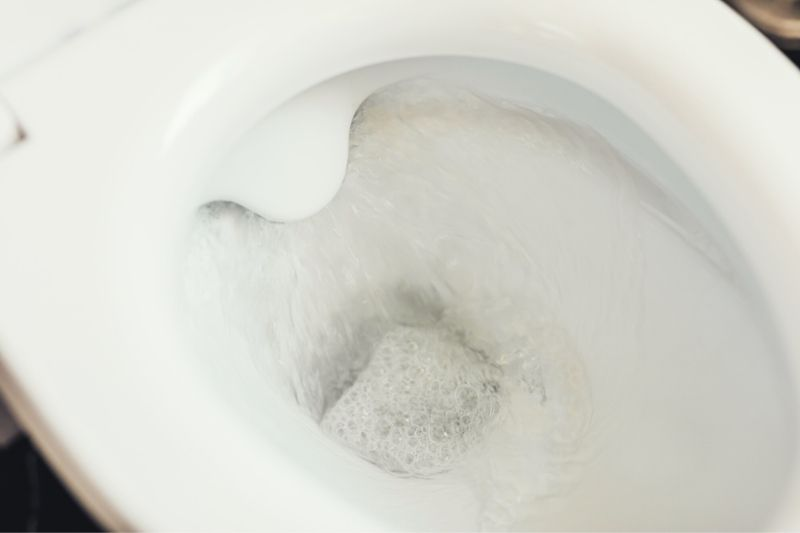 Cleaning Limescale from the Toilet
