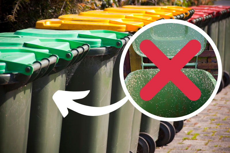How to Prevent Maggots in Your Wheelie Bin