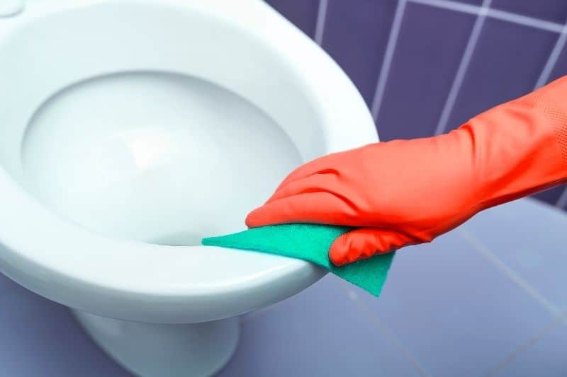 Wiping the toilet