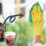 Can You Use Malt Vinegar for Cleaning?