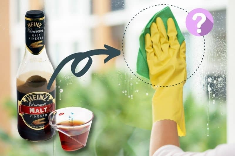 Can You Use Malt Vinegar for Cleaning