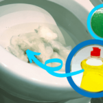 How to Unblock a Toilet with Washing Up Liquid