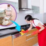 Cleaning a Dishwasher with Vinegar – Everything You Need to Know
