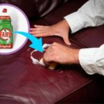 Cleaning a Leather Sofa with Fairy Liquid - Is it a Good Idea?