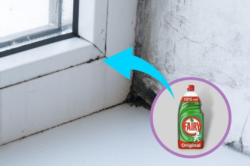 Cleaning Mould Off the Windows with Fairy Liquid
