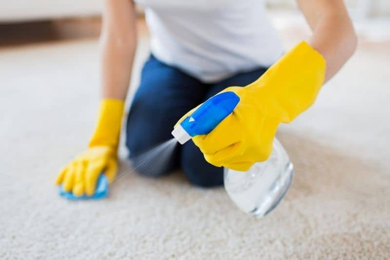 Cleaning Stain Resistant Carpet with Bleach