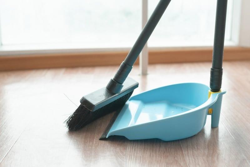 Long handled dustpan brush