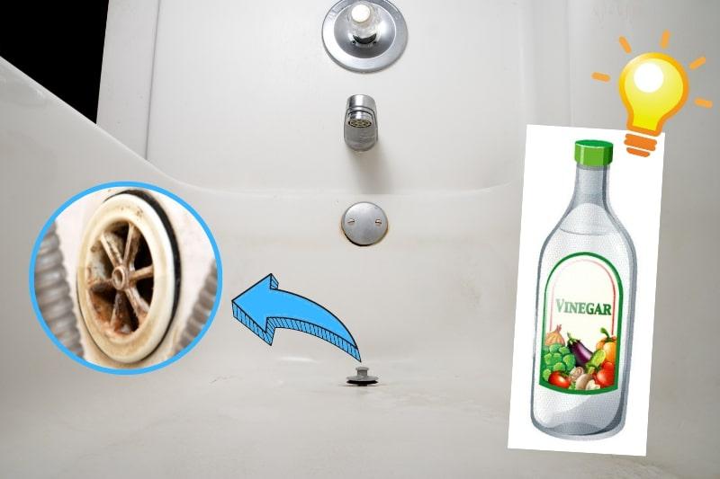 clean enamel bath with vinegar