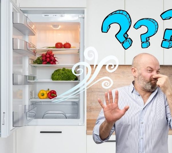 Fridge Smells But There's no Rotten Food in It – Causes and Solutions